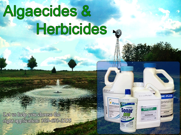 Algaecides & Herbicides